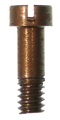 BRIDLE SCREW