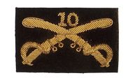 10TH CAVALRY INSIGNIA