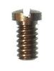 SIDE PLATE SCREW