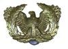 WARRANT OFFICERS INSIGNIA