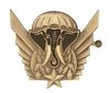 FRENCH IVORY COAST PARATROOPERS BADGE
