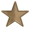 STAR CORPS BADGE