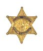 DEPUTY SHERIFF ORANGE COUNTY CALIFORNIA LAPEL PIN